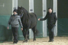 HorseDream-Train-the-Trainer-Coaching-Ausbildung