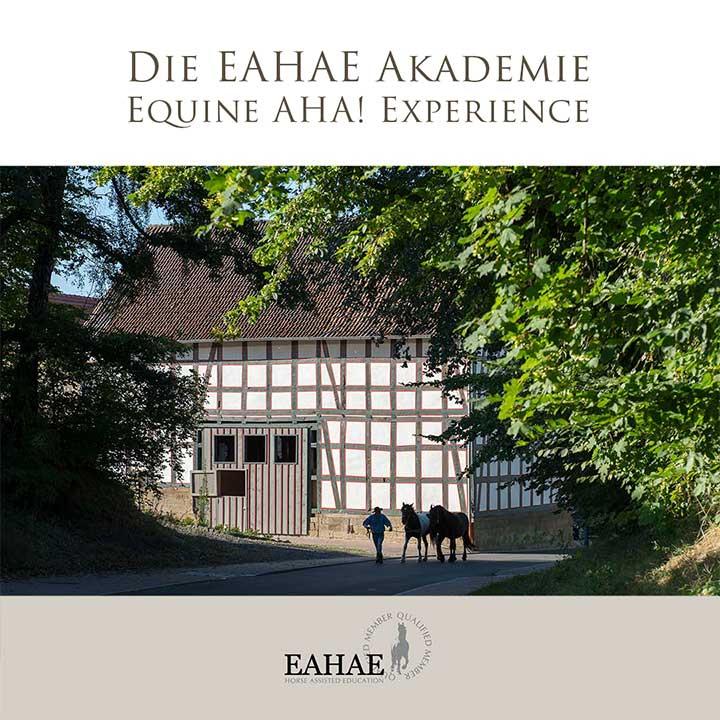 Die EAHAE Akademie: Einzeltraining