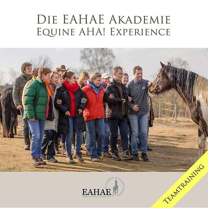 Die EAHAE Akademie: Teamtraining