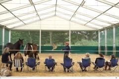 Gerhard-Jes-Krebs-Horse-Assisted-Coaching
