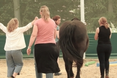 Horse-Assisted-Coaching-Frauen-Power