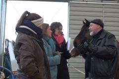 Horse-Assisted-Coaching-Gerhard-Jes-Krebs